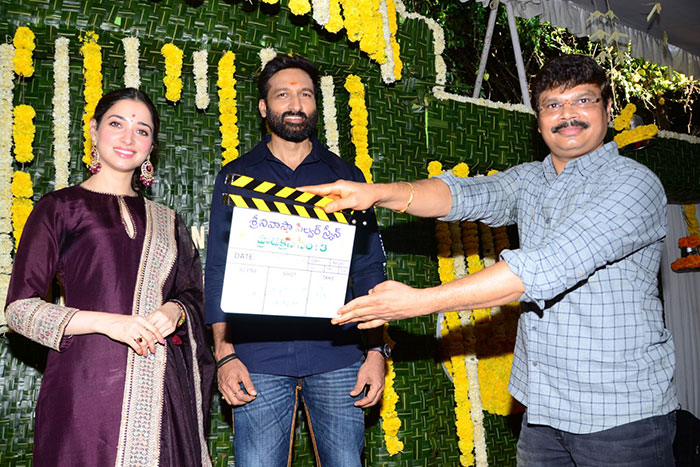 Tamanna, Gopichand-Sampath's New Film Launched