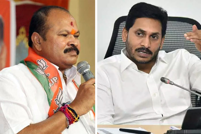 'Jagan is going soft on Chandrababu Naidu'
