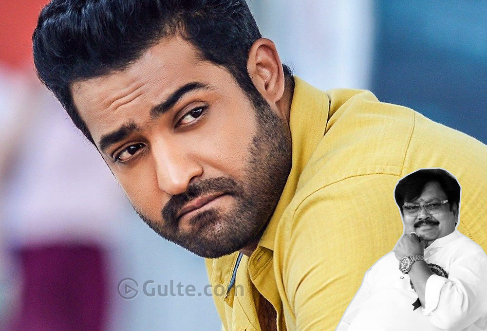 'Jr NTR Not Needed For TDP'