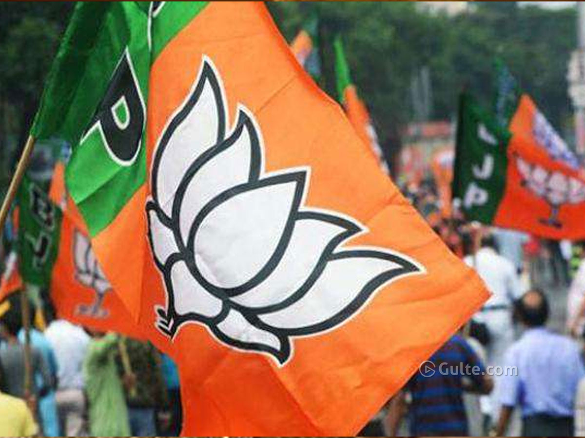 Council Issue: BJP In Big Dilemma