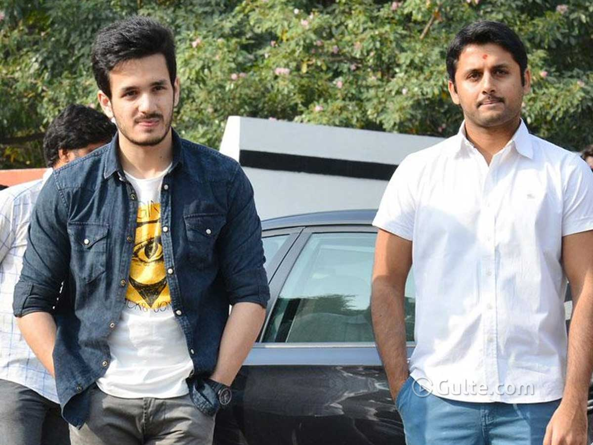 Akhil And Nithin To Join Hands For Reddy?